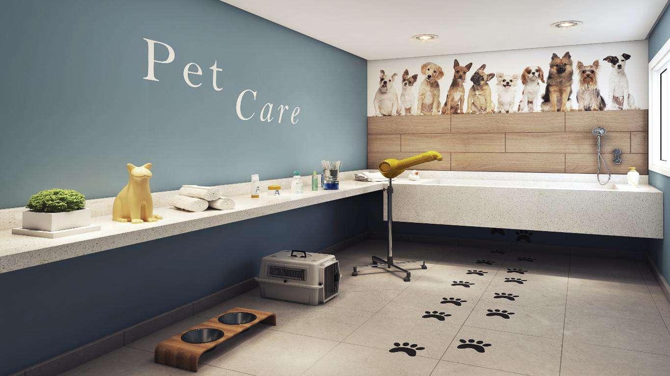 Perspectiva Ilustrada do Pet Care